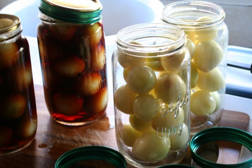 Pickled Onions – Five flavours